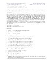 Báo cáo tài chính hợp nhất quý 4 năm 2010 - Công ty cổ phần Gia Lai CTC