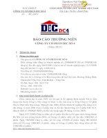 Báo cáo thường niên năm 2013 - Công ty Cổ phần DIC số 4