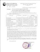 Báo cáo tài chính hợp nhất quý 4 năm 2012 - Công ty cổ phần Thế kỷ 21
