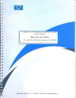 Báo cáo tài chính năm 2009 (đã kiểm toán) - Công ty Cổ phần Vận tải và Quản lý Bến xe Đà Nẵng
