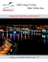 Báo cáo thường niên năm 2013 - Công ty Cổ phần Thép Dana - Ý