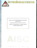 Báo cáo tài chính hợp nhất năm 2012 (đã kiểm toán) - Công ty Cổ phần Đầu tư Phát triển Cường Thuận IDICO