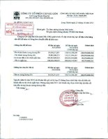 Báo cáo tài chính quý 3 năm 2011 - Công ty Cổ phần Cáp Sài Gòn