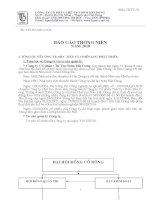 Báo cáo thường niên năm 2010 - Công ty Cổ phần Chế tạo Bơm Hải Dương