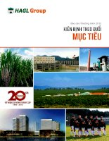 Báo cáo thường niên năm 2012 - Công ty Cổ phần Hoàng Anh Gia Lai