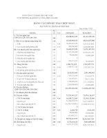 Báo cáo tài chính hợp nhất quý 1 năm 2013 - Công ty cổ phần Thương mại Dịch vụ Tổng hợp Cảng Hải Phòng