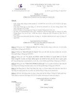 Nghị quyết đại hội cổ đông ngày 2-7-2010 - Công ty Cổ phần Chứng Khoán Chợ Lớn