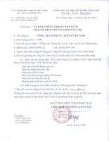 Báo cáo tài chính năm 2015 (đã kiểm toán) - Công ty Cổ phần Cafico Việt Nam