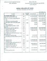 Báo cáo tài chính quý 3 năm 2010 - Công ty Cổ phần Kỹ nghệ Đô Thành