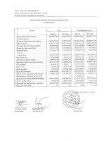 Báo cáo tài chính hợp nhất quý 3 năm 2010 - Công ty Cổ phần Gemadept