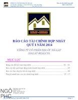 Báo cáo tài chính hợp nhất quý 1 năm 2014 - Công ty Cổ phần Địa ốc Đà Lạt