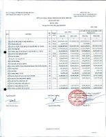 Báo cáo tài chính công ty mẹ quý 2 năm 2012 - Công ty Cổ phần Sản xuất Thương mại May Sài Gòn