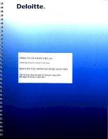 Báo cáo tài chính quý 2 năm 2013 (đã soát xét) - Công ty Cổ phần Việt An