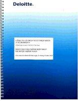 Báo cáo tài chính hợp nhất năm 2012 (đã kiểm toán) - Công ty Cổ phần Xuất nhập khẩu Y tế Domesco