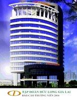Báo cáo thường niên năm 2014 - Công ty Cổ phần Tập đoàn Đức Long Gia Lai