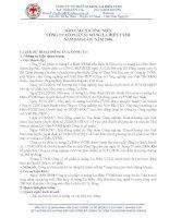 Báo cáo thường niên năm 2008 - CTCP Xi măng La Hiên VVMI