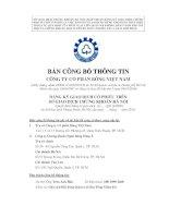 Bản cáo bạch - Công ty cổ phần Bông Việt Nam