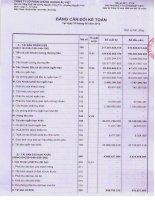 Báo cáo tài chính quý 2 năm 2013 - Công ty Cổ phần Chứng khoán Âu Việt