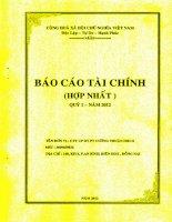 Báo cáo tài chính hợp nhất quý 1 năm 2012 - Công ty Cổ phần Đầu tư Phát triển Cường Thuận IDICO