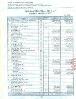 Báo cáo tài chính hợp nhất quý 3 năm 2012 - Công ty Cổ phần Dịch vụ Ô tô Hàng Xanh
