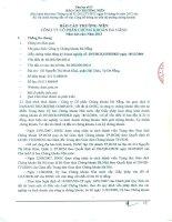 Báo cáo thường niên năm 2013 - Công ty Cổ phần Chứng khoán Đà Nẵng