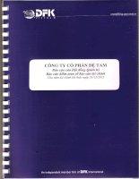 Báo cáo tài chính năm 2012 (đã kiểm toán) - Công ty Cổ phần Đệ Tam