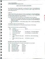 Báo cáo tài chính hợp nhất quý 2 năm 2011 (đã soát xét) - Công ty Cổ phần Bibica