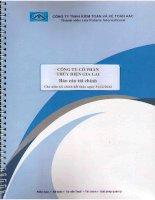 Báo cáo tài chính năm 2012 (đã kiểm toán) -  Công ty Cổ phần Thủy điện Gia Lai