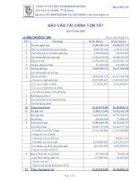 Báo cáo tài chính quý 4 năm 2009 - Công ty Cổ phần Chế tạo Bơm Hải Dương