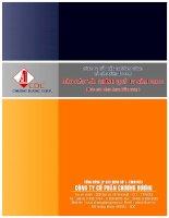 Báo cáo tài chính hợp nhất quý 4 năm 2011 - Công ty Cổ phần Chương Dương