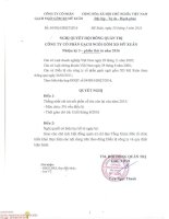 Nghị quyết Hội đồng Quản trị - Công ty cổ phần Gạch Ngói Gốm Xây dựng Mỹ Xuân