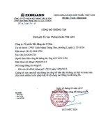 Báo cáo tài chính công ty mẹ quý 1 năm 2013 - Công ty cổ phần Bất động sản E Xim