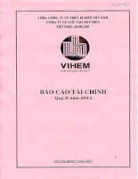 Báo cáo tài chính quý 2 năm 2015 - Công ty cổ phần Chế tạo máy điện Việt Nam - Hungari