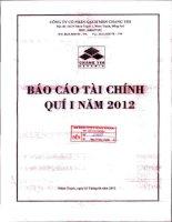 Báo cáo tài chính quý 1 năm 2012 - Công ty Cổ phần Gạch men Chang Yih