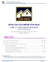 Báo cáo tài chính năm 2010 (đã kiểm toán) - Công ty Cổ phần Địa ốc Đà Lạt