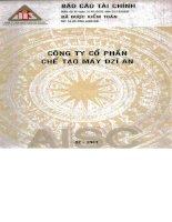 Báo cáo tài chính năm 2002 (đã kiểm toán) - Công ty Cổ phần Chế tạo máy Dzĩ An