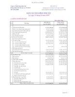Báo cáo tài chính quý 3 năm 2009 - Công ty Cổ phần Nông dược H.A.I