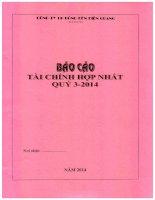 Báo cáo tài chính hợp nhất quý 3 năm 2014 - Công ty Cổ phần Bóng đèn Điện Quang