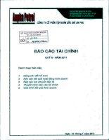 Báo cáo tài chính công ty mẹ quý 2 năm 2011 - Công ty Cổ phần Tập đoàn Dầu khí An Pha