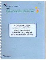 Báo cáo tài chính quý 2 năm 2010 - Công ty Cổ phần Chế biến và Xuất nhập khẩu Thuỷ sản Cà Mau