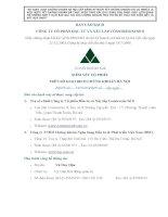 Bản cáo bạch - Công ty cổ phần Đầu tư và Xây lắp Constrexim số 8