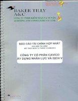 Báo cáo tài chính hợp nhất năm 2012 (đã kiểm toán) - Công ty cổ phần Xây dựng và Nhân lực Việt Nam