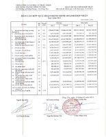 Báo cáo KQKD hợp nhất quý 1 năm 2013 - Tổng Công ty Cổ phần Đầu tư Phát triển Xây dựng