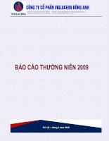 Báo cáo thường niên năm 2009 - Công ty Cổ phần Viglacera Đông Anh