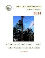 Báo cáo thường niên năm 2014 - Công ty Cổ phần Phát triển điện Nông thôn Trà Vinh
