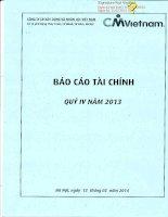 Báo cáo tài chính công ty mẹ quý 4 năm 2013 - Công ty cổ phần Xây dựng và Nhân lực Việt Nam
