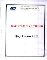 Báo cáo tài chính quý 1 năm 2011 - Công ty Cổ phần Chứng khoán Âu Việt