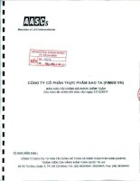 Báo cáo tài chính năm 2011 (đã kiểm toán) - Công ty Cổ phần Thực phẩm Sao Ta