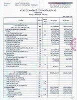 Báo cáo tài chính quý 3 năm 2010 - Công ty Cổ phần Cáp Sài Gòn