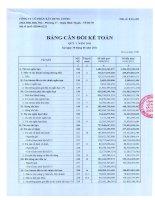 Báo cáo tài chính quý 2 năm 2011 - Công ty Cổ phần Xây dựng Cotec